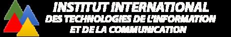 IITIC FORMATION INFORMATIQUE ET MANAGEMENT DE HAUT NIVEAU